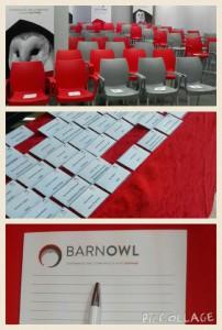 BarnOwl Pic 5