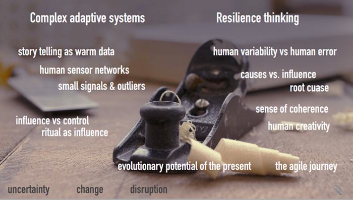 complex-adaptive-systems-resilience-thinking